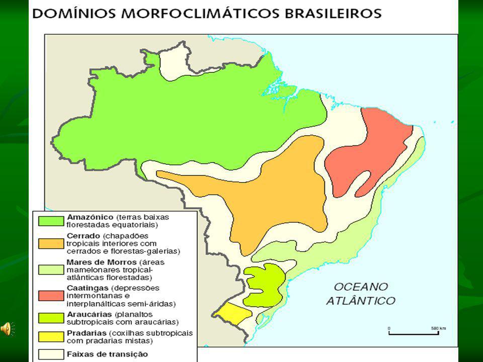 Domínio da Caatinga: Clima: Tropical Semi-Árido (chuvas irregulares)
