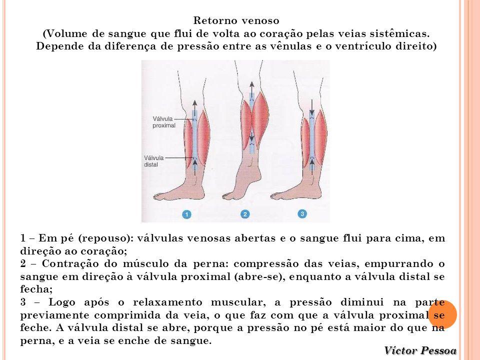(Volume de sangue que flui de volta ao coração pelas veias sistêmicas.