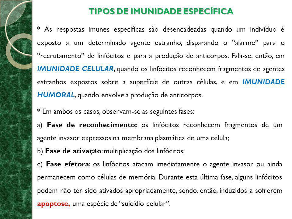 TIPOS DE IMUNIDADE ESPECÍFICA