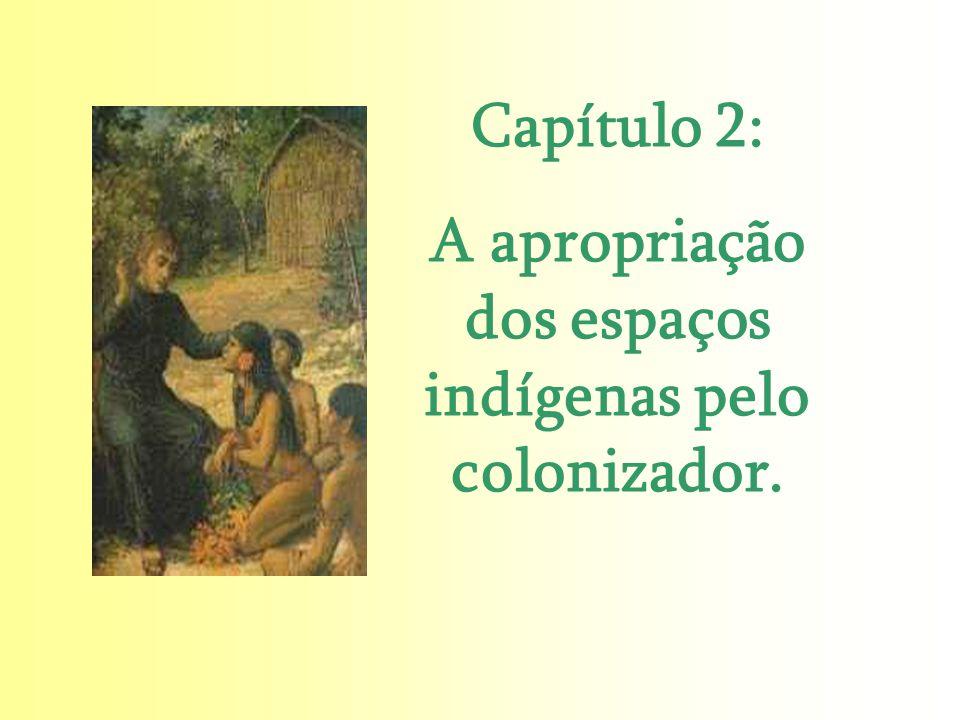 A apropriação dos espaços indígenas pelo colonizador.