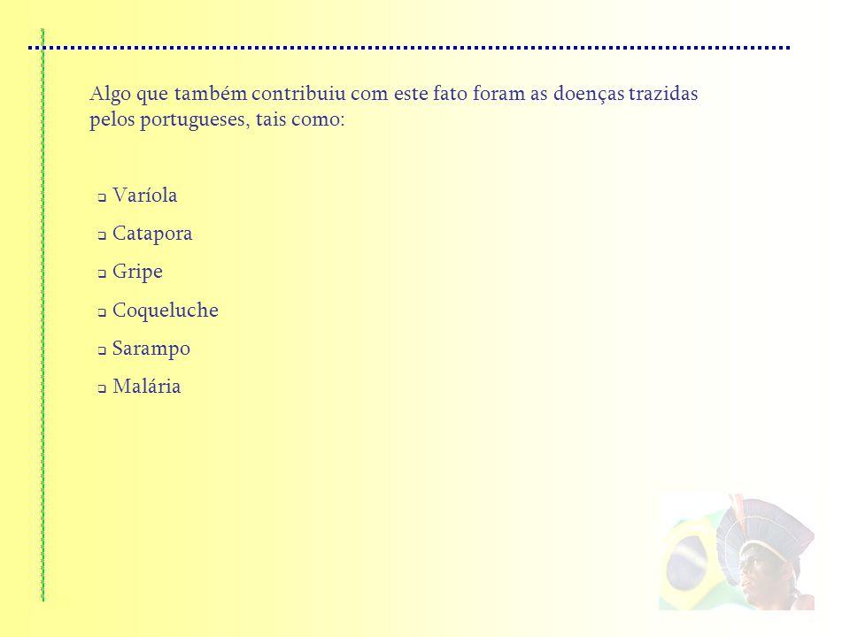 Algo que também contribuiu com este fato foram as doenças trazidas pelos portugueses, tais como: