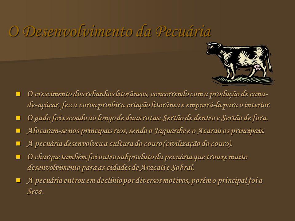 O Desenvolvimento da Pecuária