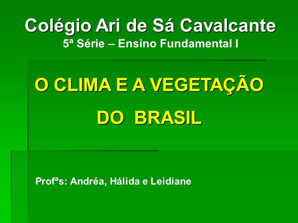 Colégio Ari de Sá Cavalcante 5ª Série – Ensino Fundamental I