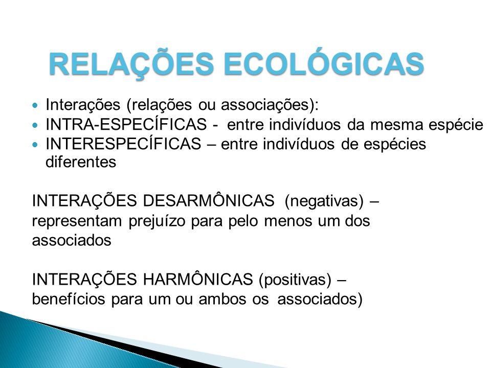RELAÇÕES ECOLÓGICAS Interações (relações ou associações):