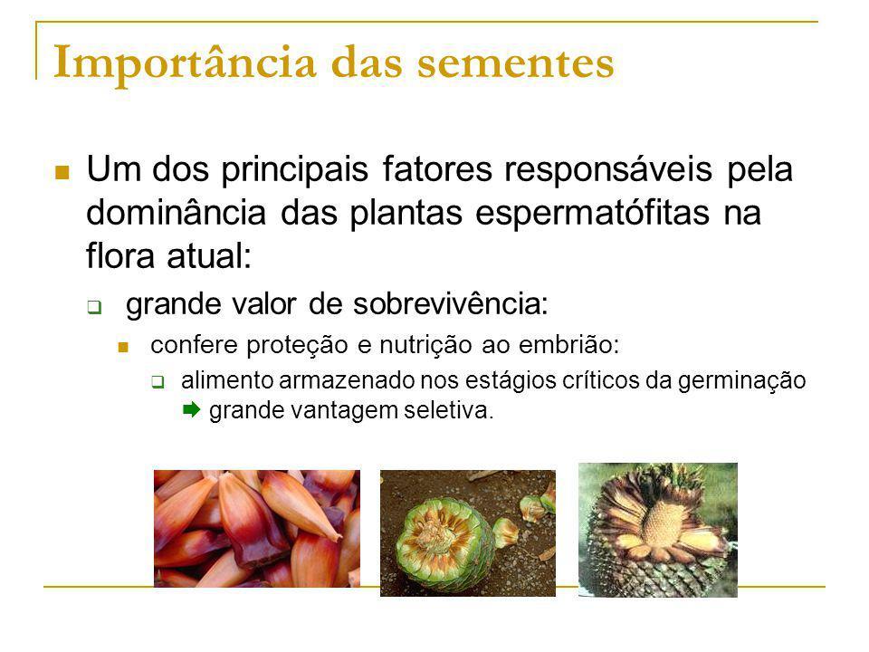 Importância das sementes