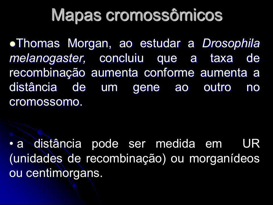 Mapas cromossômicos