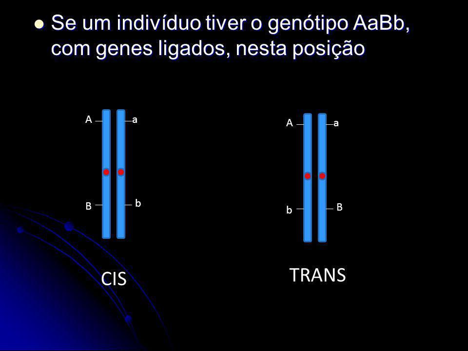 Se um indivíduo tiver o genótipo AaBb, com genes ligados, nesta posição