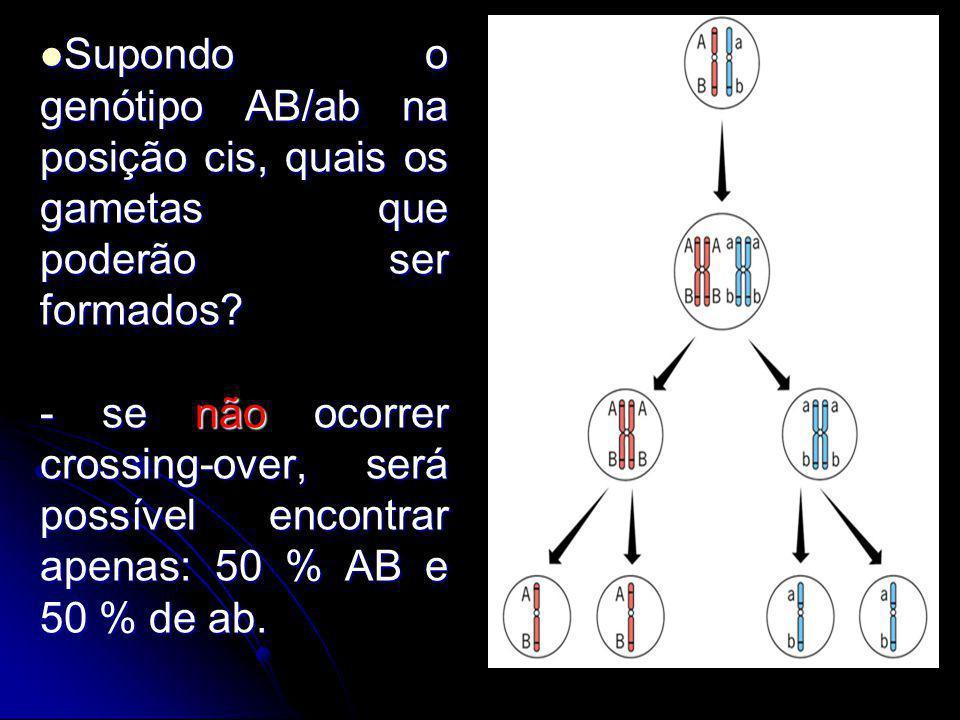 Supondo o genótipo AB/ab na posição cis, quais os gametas que poderão ser formados