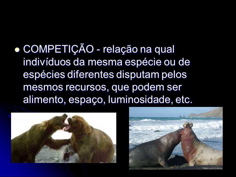COMPETIÇÃO - relação na qual indivíduos da mesma espécie ou de espécies diferentes disputam pelos mesmos recursos, que podem ser alimento, espaço, luminosidade, etc.