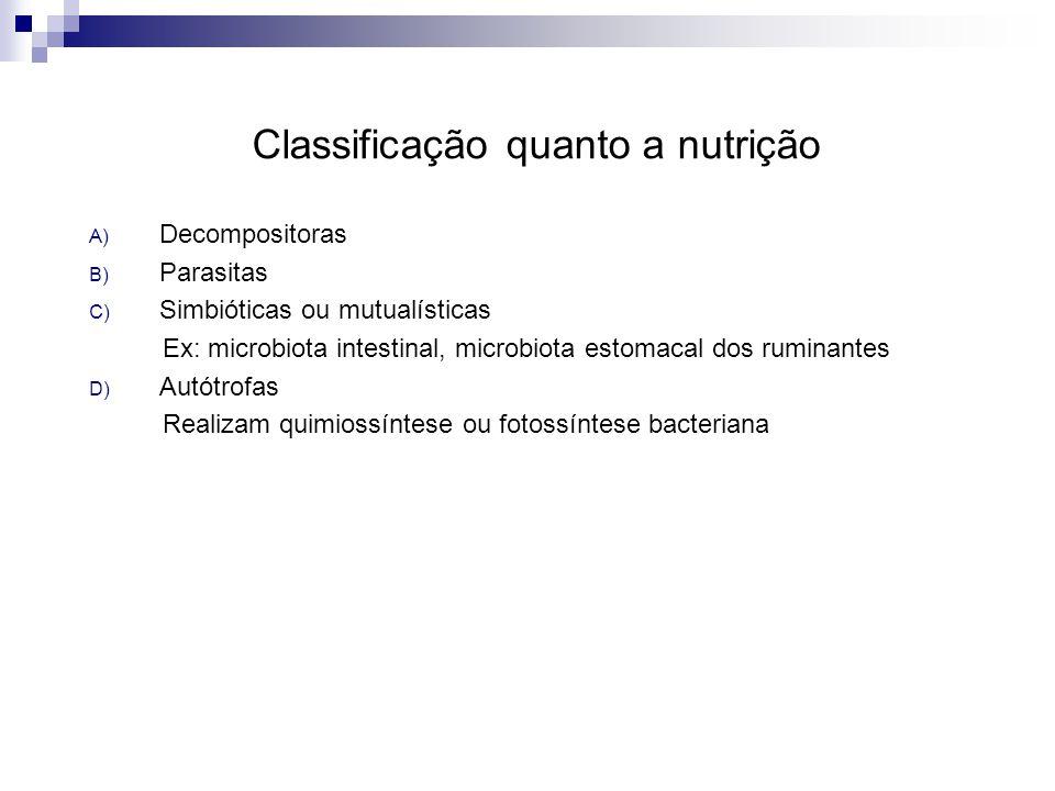 Classificação quanto a nutrição