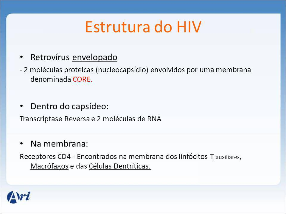 Estrutura do HIV Retrovírus envelopado Dentro do capsídeo: