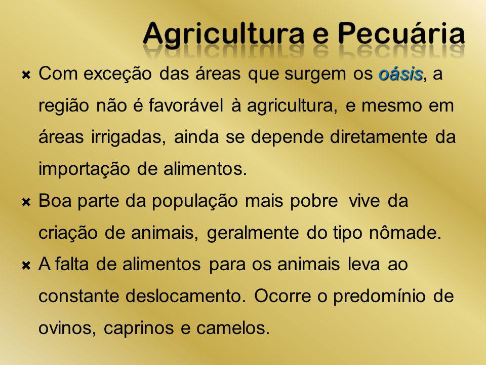 Com exceção das áreas que surgem os oásis, a região não é favorável à agricultura, e mesmo em áreas irrigadas, ainda se depende diretamente da importação de alimentos.