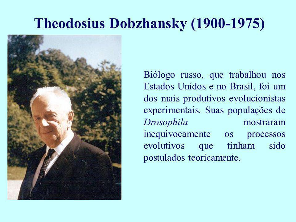 Theodosius Dobzhansky (1900-1975)