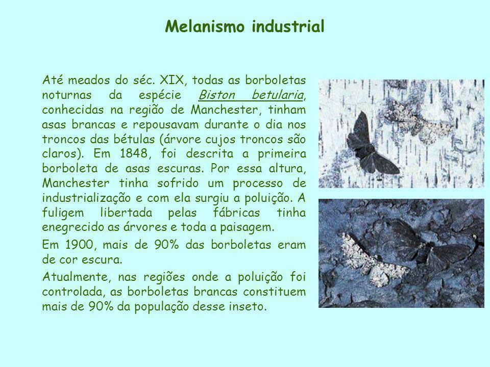 Melanismo industrial