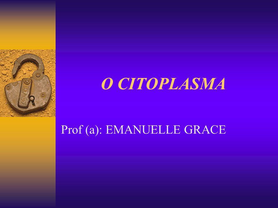 Prof (a): EMANUELLE GRACE