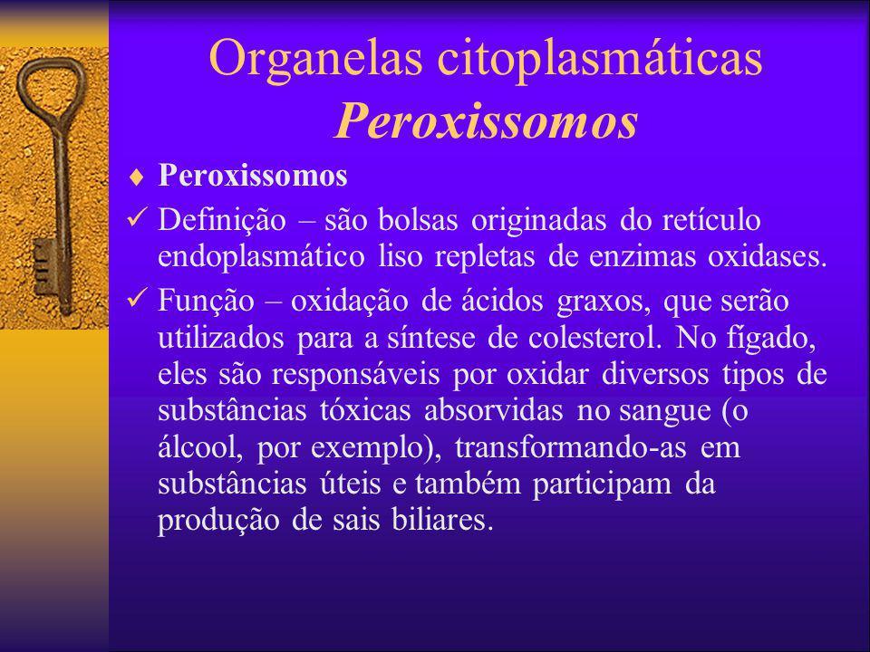 Organelas citoplasmáticas Peroxissomos