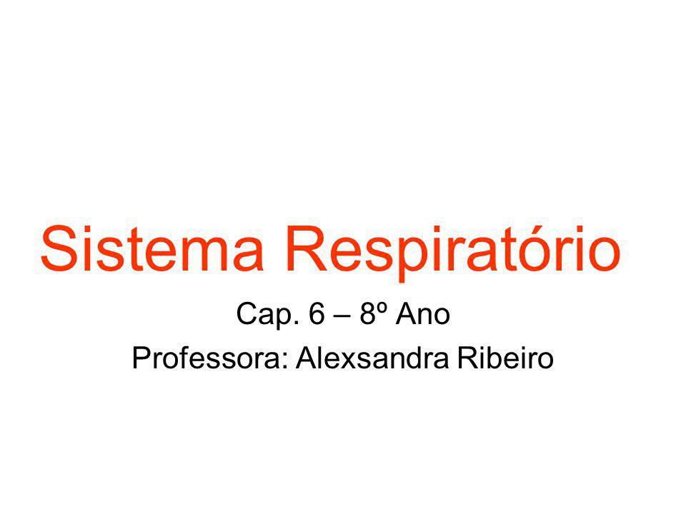 Cap. 6 – 8º Ano Professora: Alexsandra Ribeiro