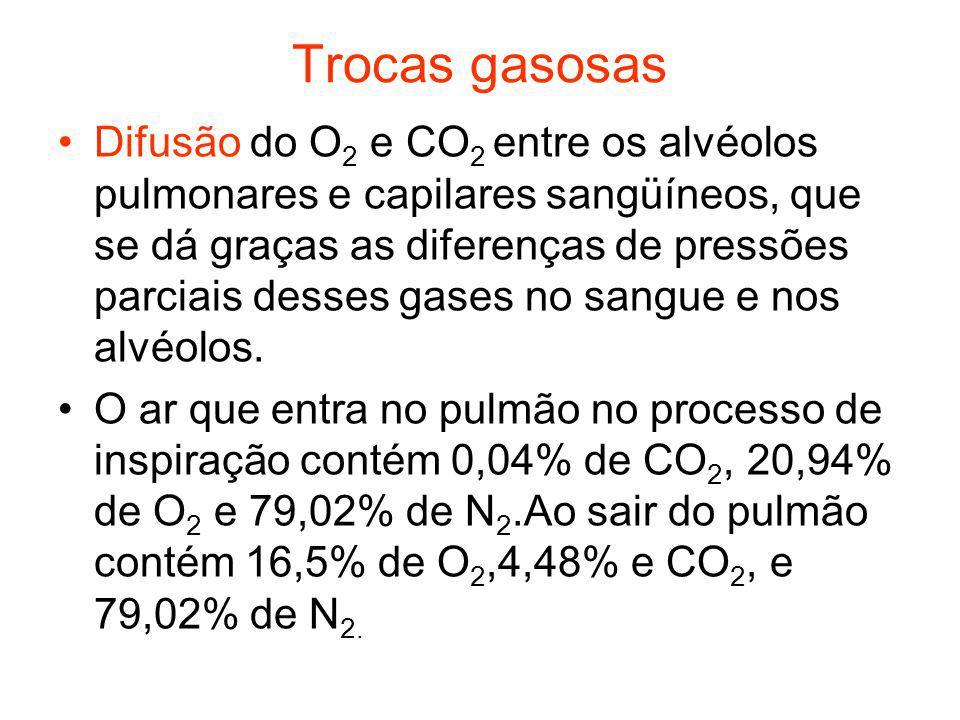 Trocas gasosas