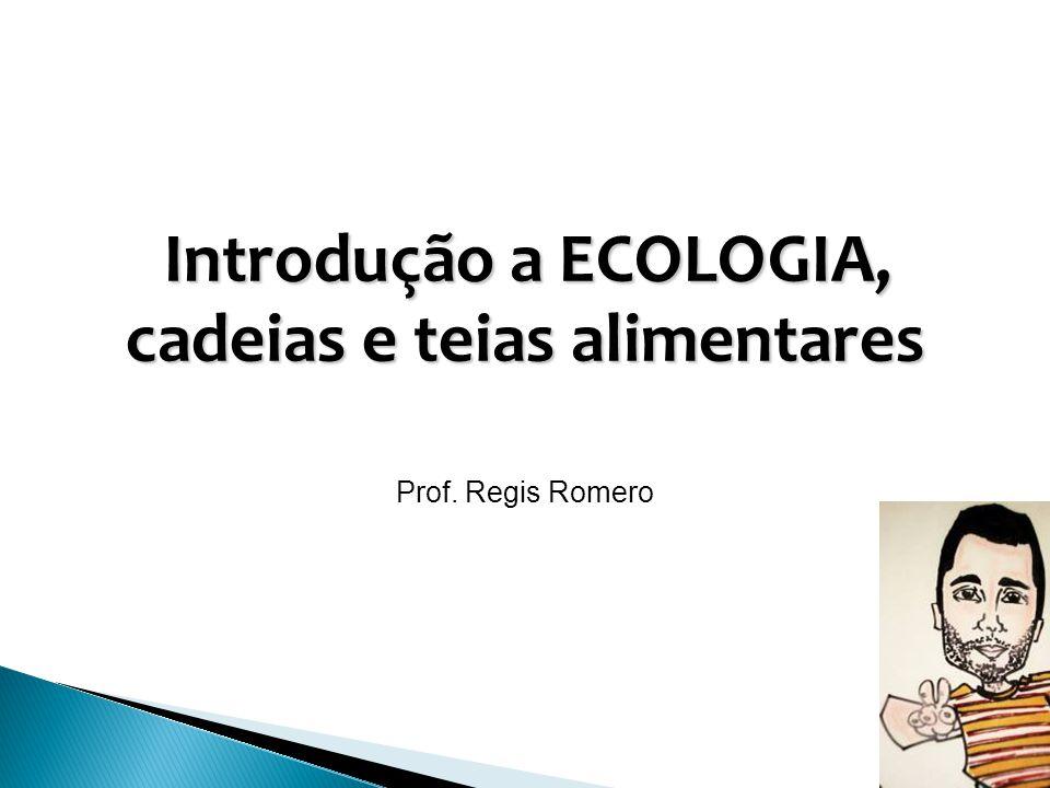 Introdução a ECOLOGIA, cadeias e teias alimentares