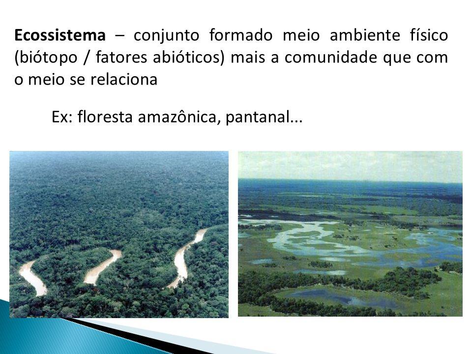Ecossistema – conjunto formado meio ambiente físico (biótopo / fatores abióticos) mais a comunidade que com o meio se relaciona