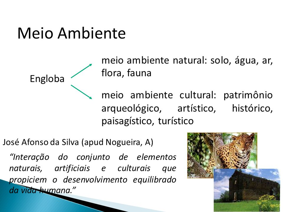 Meio Ambiente meio ambiente natural: solo, água, ar, flora, fauna