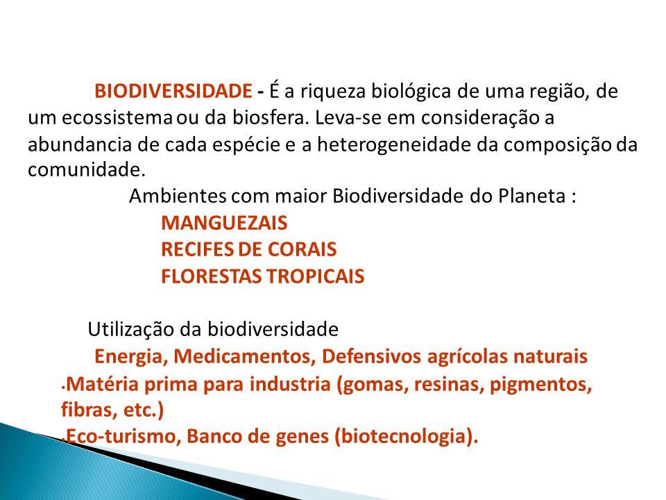Ambientes com maior Biodiversidade do Planeta : MANGUEZAIS