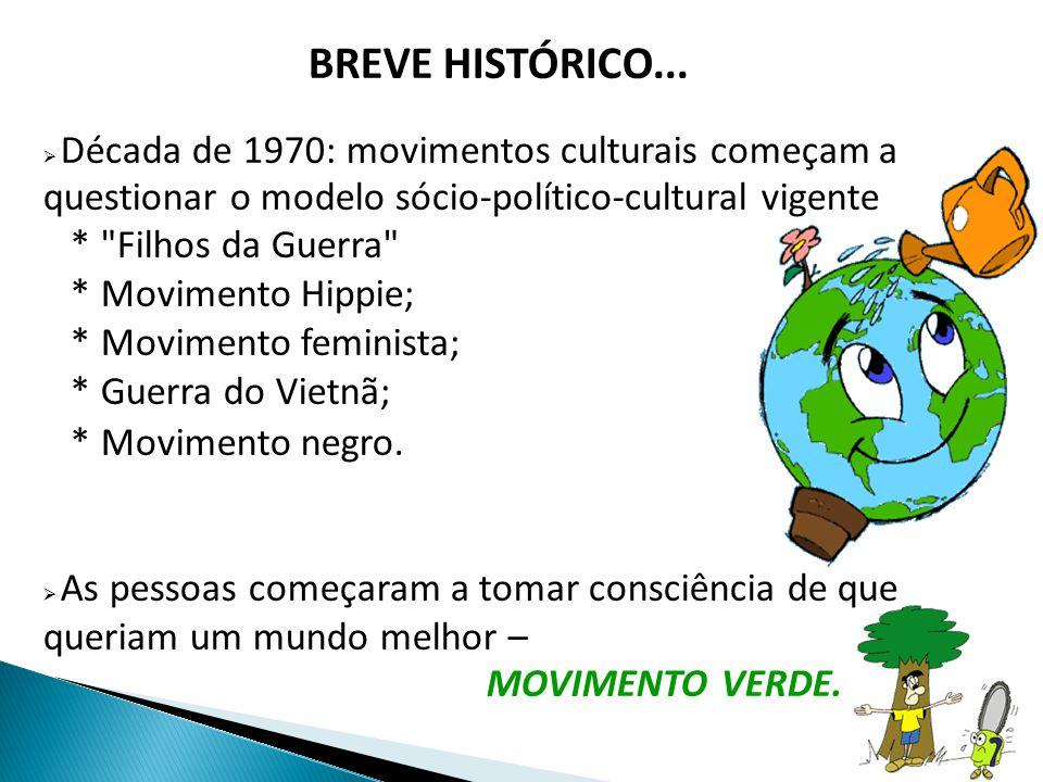 BREVE HISTÓRICO... Década de 1970: movimentos culturais começam a questionar o modelo sócio-político-cultural vigente.