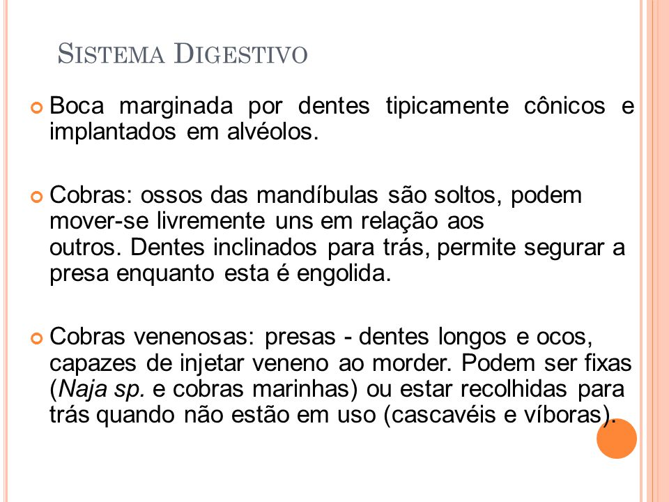Sistema Digestivo Boca marginada por dentes tipicamente cônicos e implantados em alvéolos.
