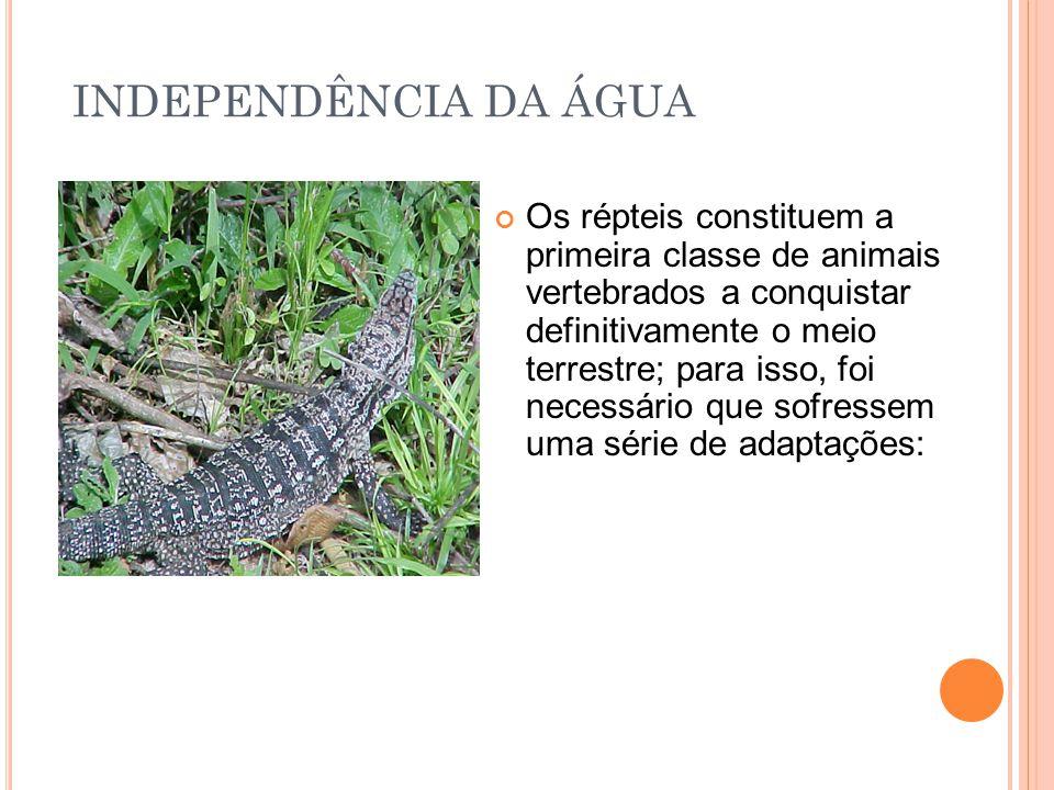 INDEPENDÊNCIA DA ÁGUA