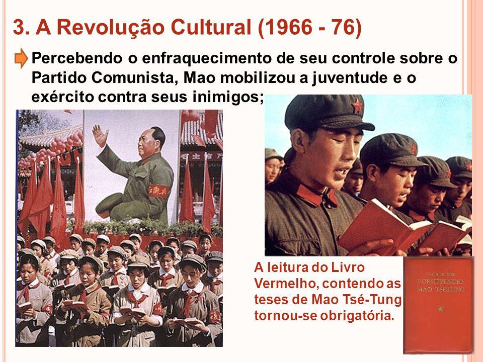 3. A Revolução Cultural (1966 - 76)