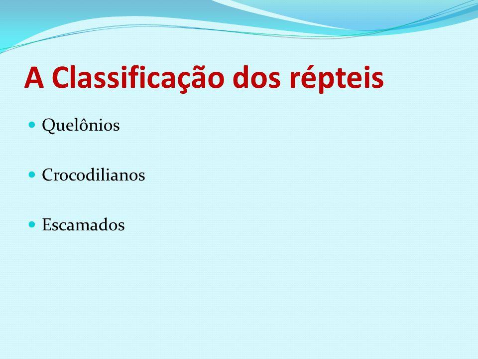 A Classificação dos répteis