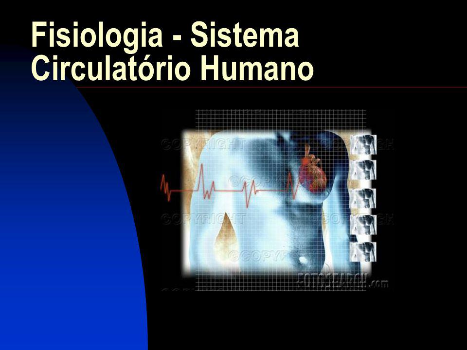 Fisiologia - Sistema Circulatório Humano