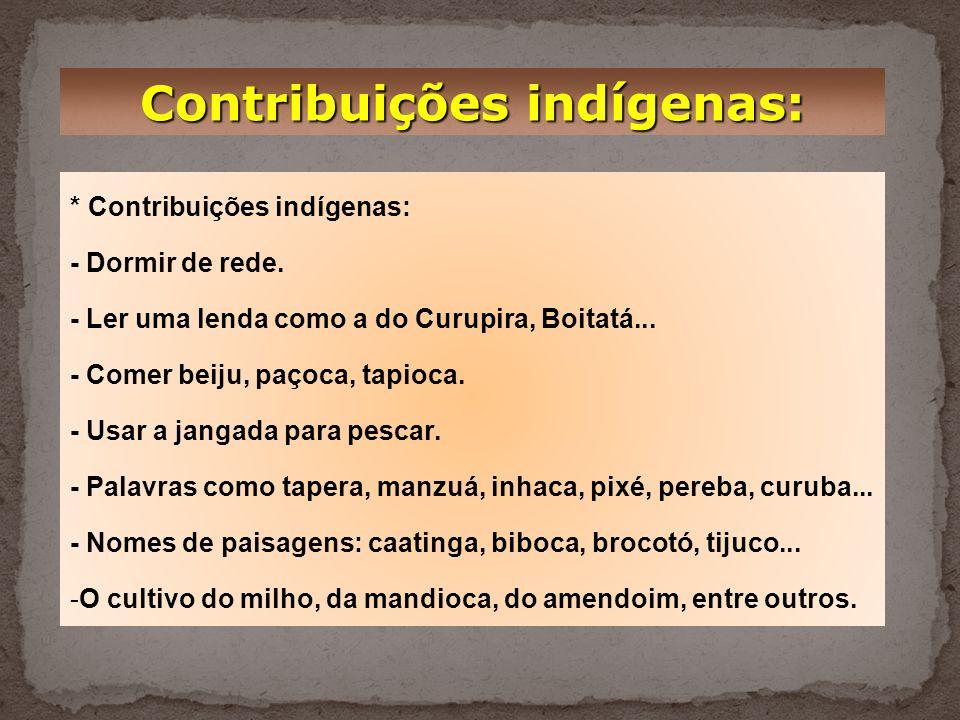 Contribuições indígenas: