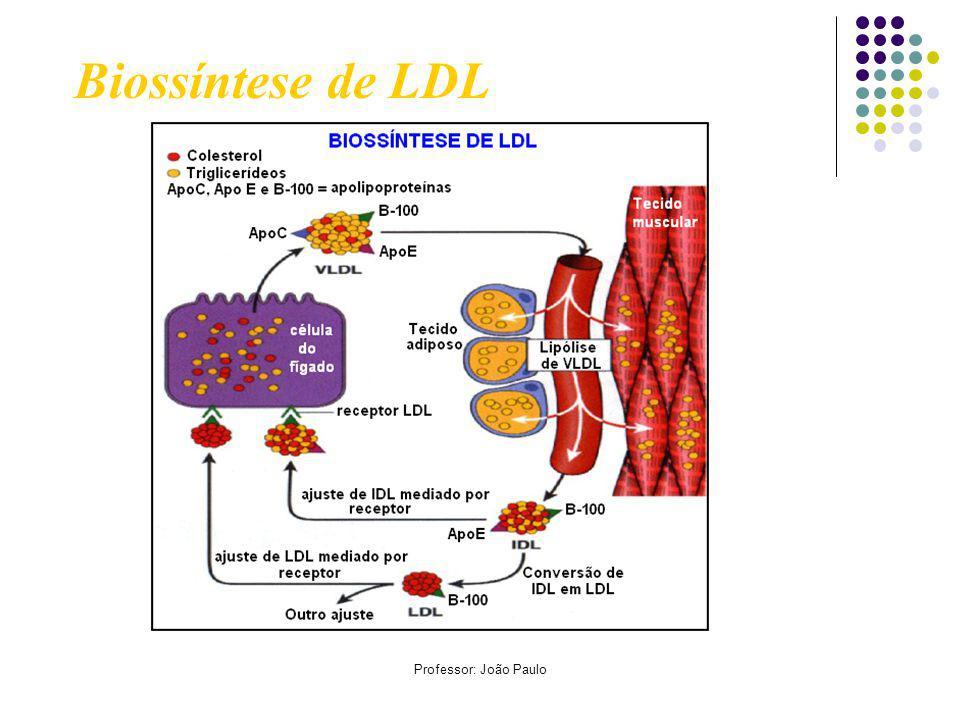 Biossíntese de LDL Professor: João Paulo