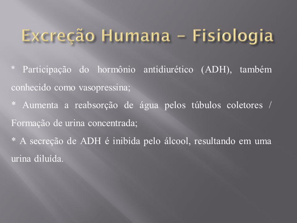 * Participação do hormônio antidiurético (ADH), também conhecido como vasopressina;