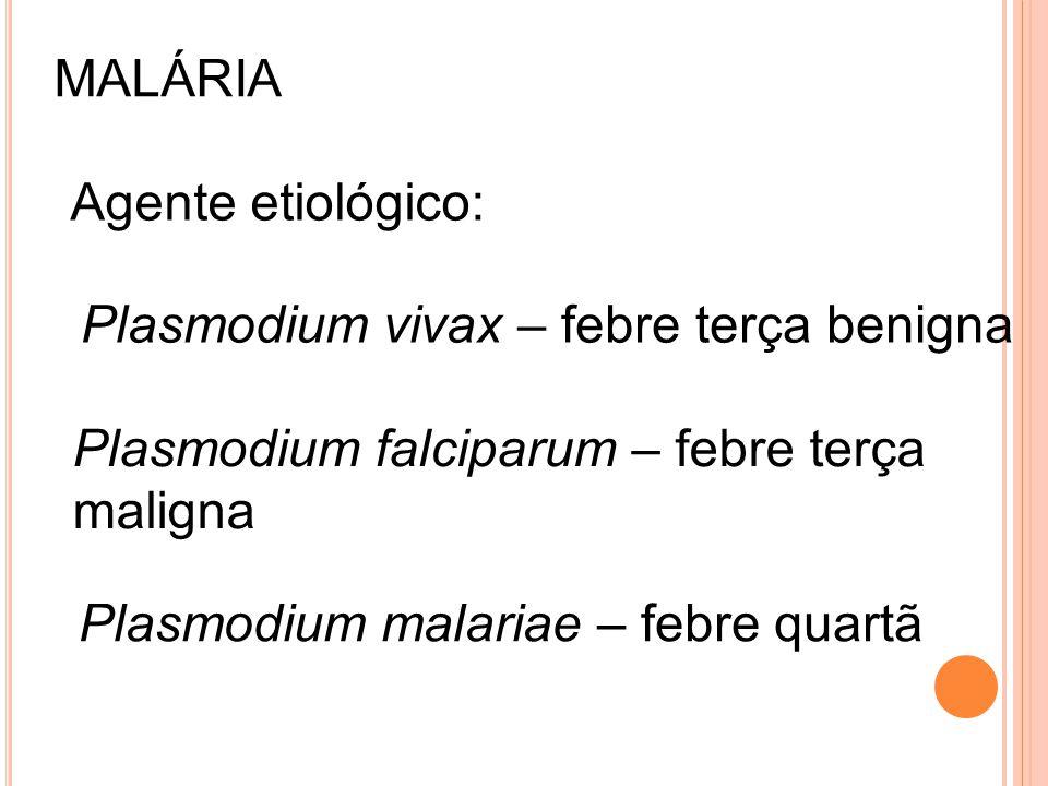 MALÁRIA Agente etiológico: Plasmodium vivax – febre terça benigna. Plasmodium falciparum – febre terça.