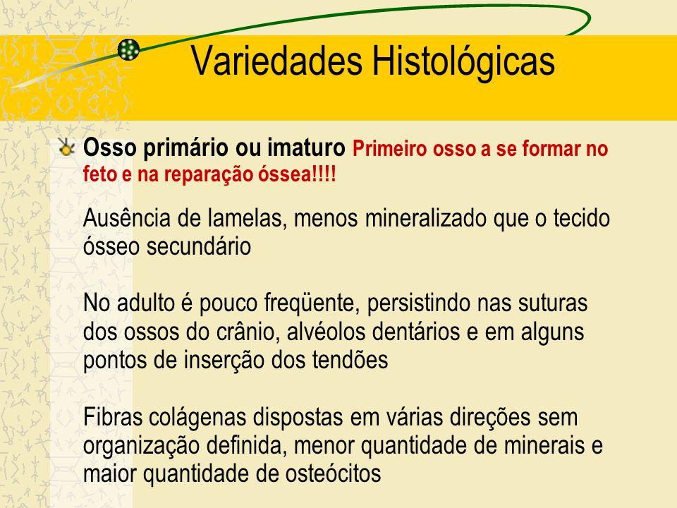 Variedades Histológicas