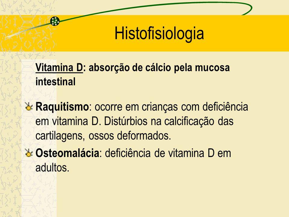 Histofisiologia Vitamina D: absorção de cálcio pela mucosa intestinal