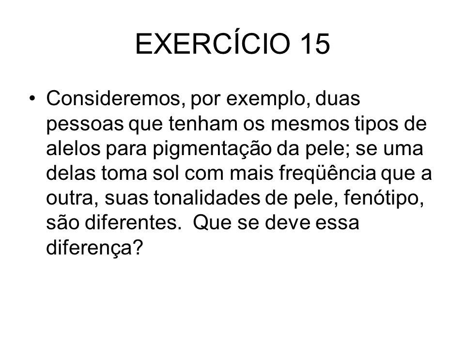 EXERCÍCIO 15