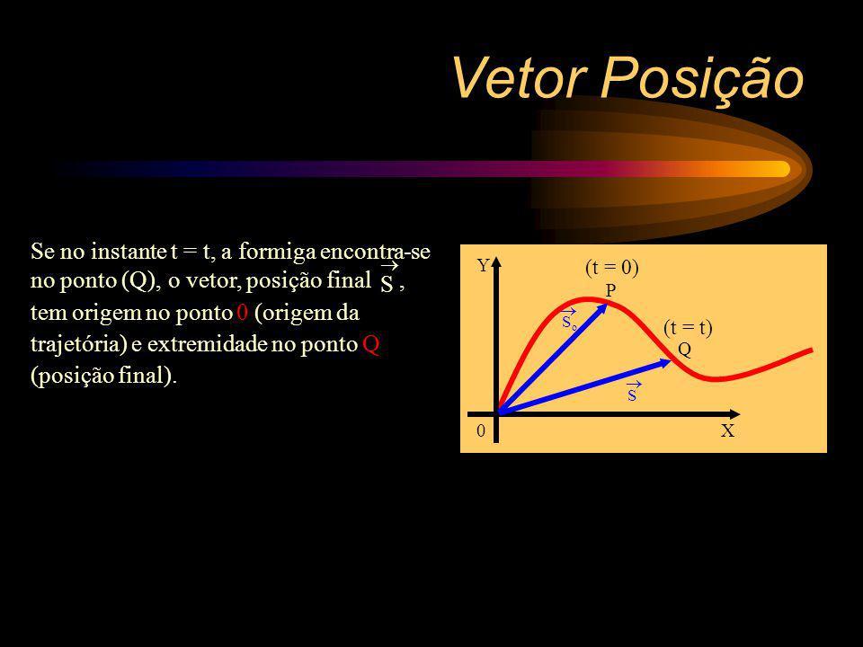 Vetor Posição Se no instante t = t, a formiga encontra-se no ponto (Q),