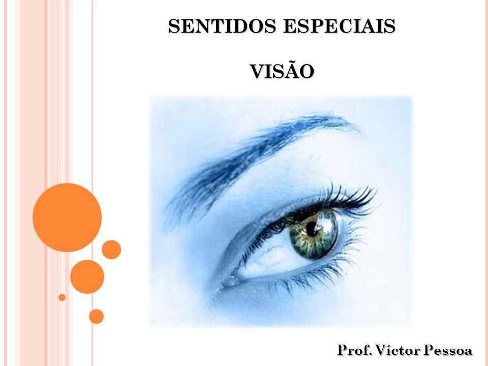 SENTIDOS ESPECIAIS VISÃO