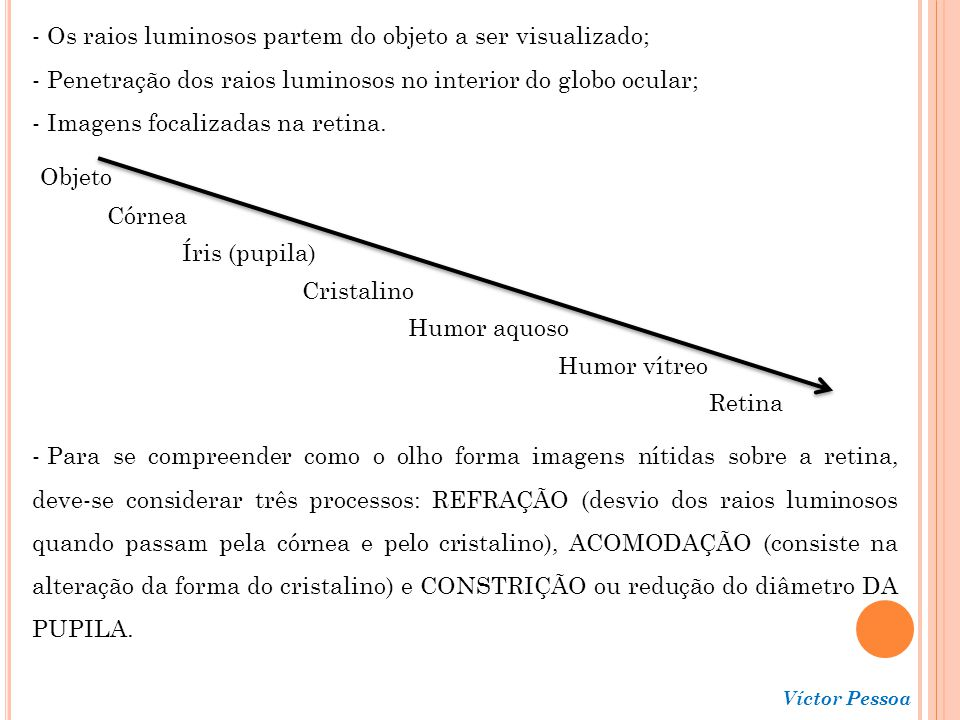 Os raios luminosos partem do objeto a ser visualizado;