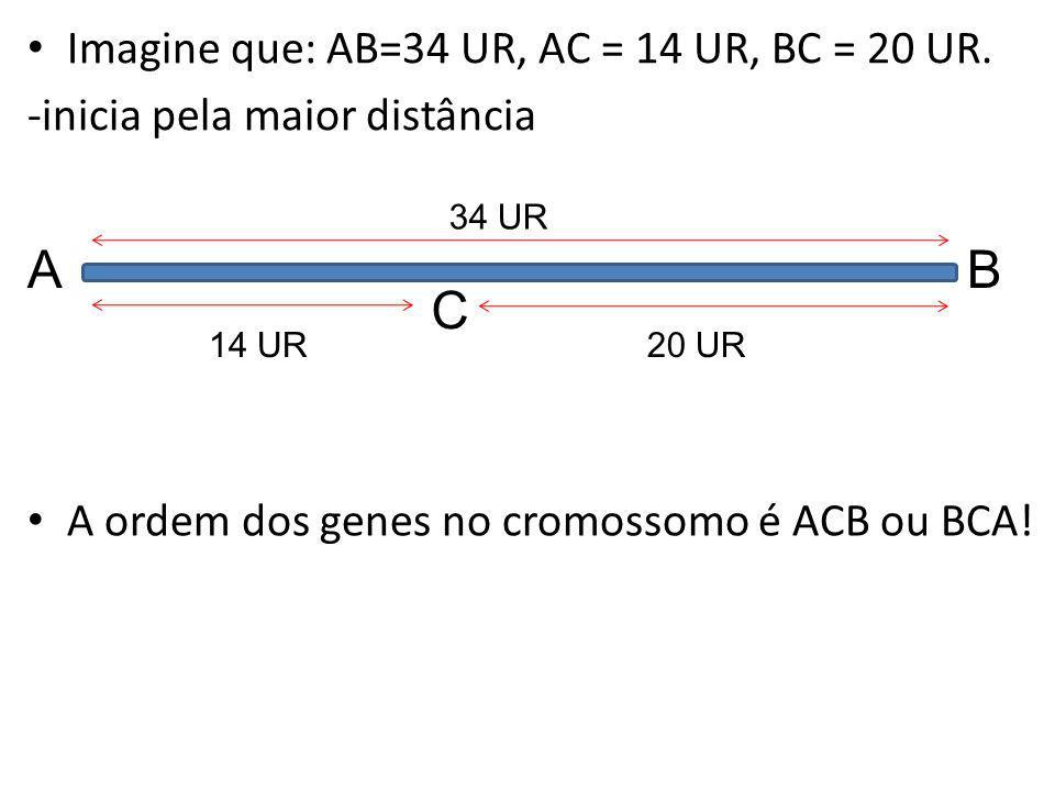 A B C Imagine que: AB=34 UR, AC = 14 UR, BC = 20 UR.