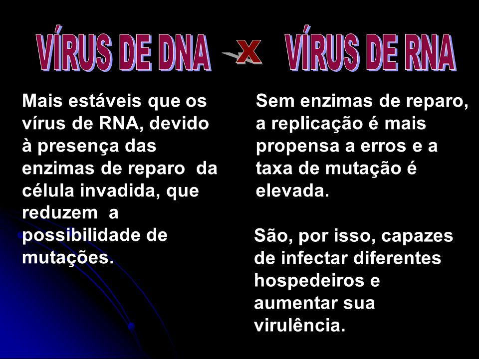 X VÍRUS DE DNA VÍRUS DE RNA