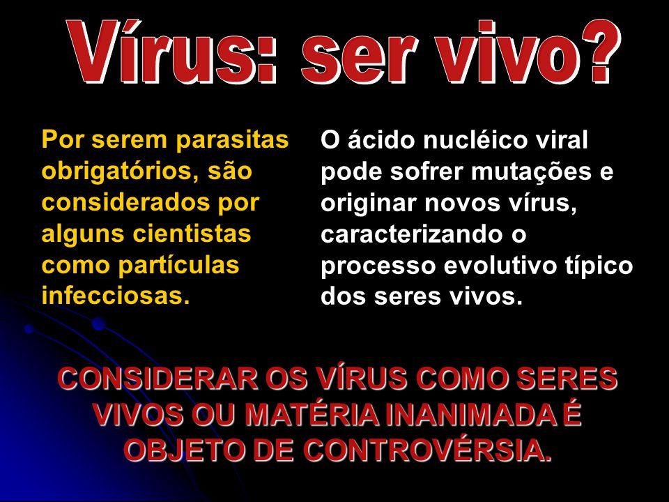 Vírus: ser vivo Por serem parasitas obrigatórios, são considerados por alguns cientistas como partículas infecciosas.