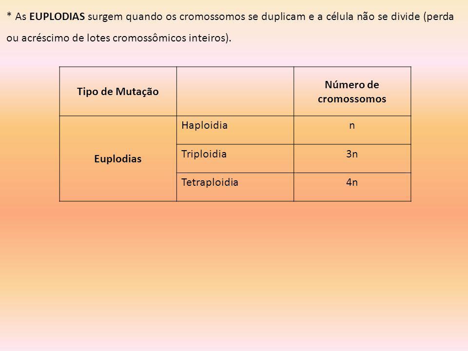 * As EUPLODIAS surgem quando os cromossomos se duplicam e a célula não se divide (perda ou acréscimo de lotes cromossômicos inteiros).