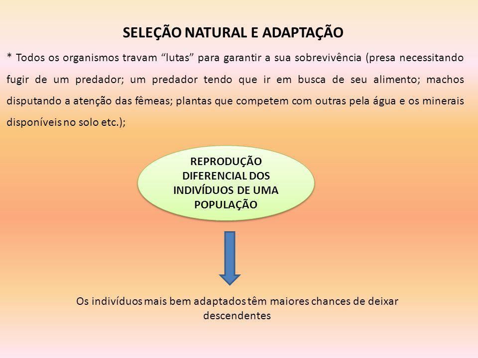 SELEÇÃO NATURAL E ADAPTAÇÃO