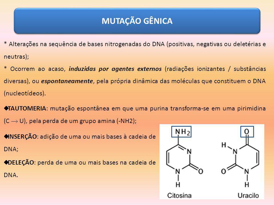 MUTAÇÃO GÊNICA * Alterações na sequência de bases nitrogenadas do DNA (positivas, negativas ou deletérias e neutras);