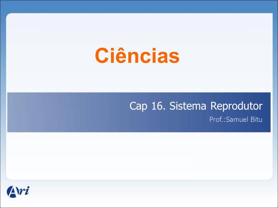 Ciências Cap 16. Sistema Reprodutor Prof.:Samuel Bitu