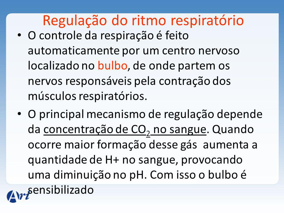 Regulação do ritmo respiratório
